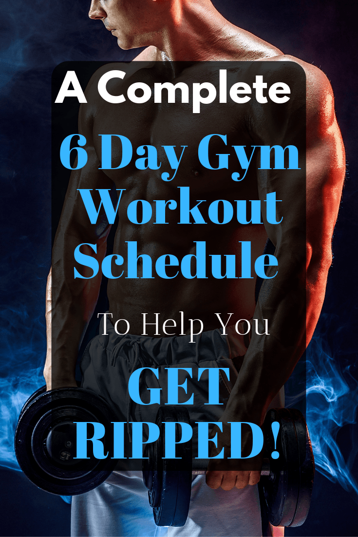 This 6 day gym workout schedule will help you build muscle like no other routine could. Discover the secrete workout behind Arnold Schwarzenegger\'s success.